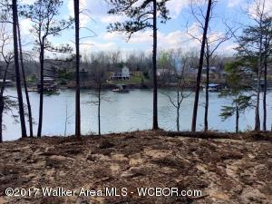 LOT 123 SIPSEY OVERLOOK, Double Springs, AL 35553