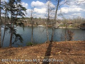 LOT 79 SIPSEY OVERLOOK, Double Springs, AL 35553