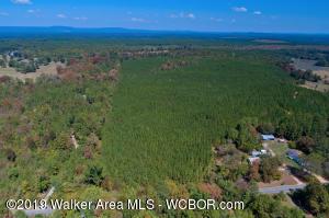 HWY 40, Wilsonville, AL 35186