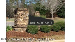 LOT 25 BLUE WATER POINTE DR, Jasper, AL 35504