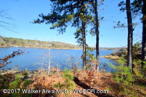 LOT 22 BRUSHY CREEK POINTE, Arley, AL 35541