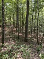 LOT 18 LAKE DRIVE, Logan, AL 35098
