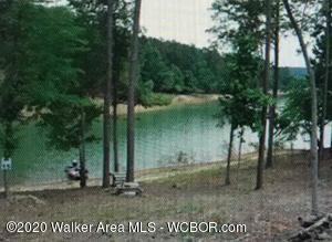 LOT 15 FLAT WATER Cir, Double Springs, AL 35553