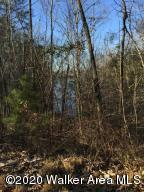 LOT 34-37 BRUSHY ESTATES, Arley, AL 35541