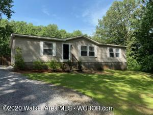 81 WINDWOOD Dr, Haleyville, AL 35565