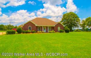 406 COUNTY RD 3408, Haleyville, AL 35565