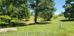 Rare find in Arley. Beautiful land. Partially cleared mini farm. Endless opportunities. Horses, multiple home sites, add a pond.  Septic, power, and water already on property.