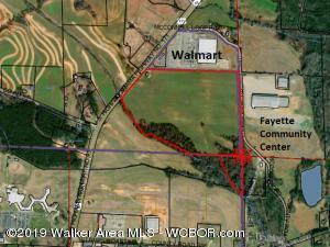 3098 HWY. 171, Fayette, AL 35555