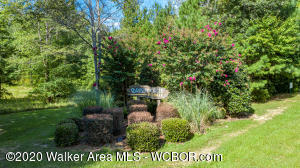 LOT 52 EMMONS Dr, Arley, AL 35541