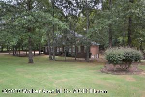 2907 LONG RIDGE Dr, Jasper, AL 35504