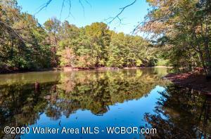 Pond on Stonebrook Lot