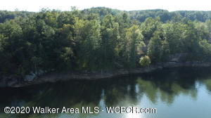 LOT 91 SIPSEY OVERLOOK RD, Double Springs, AL 35553