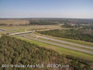 I-22 INTERSTATE/HWY.118, Jasper, AL 35501