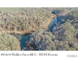 0 COUNTY ROAD 9, Eldridge, AL 35554