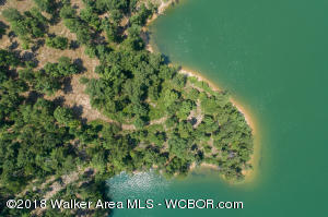 LOT 29B DISMAL BAY, Arley, AL 35541