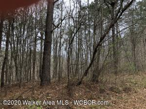 LOT 77 SOUTH FORK RD, Quinton, AL 35130