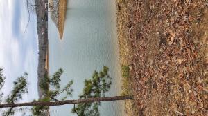 142 CEDAR POINT ROAD, Double Springs, AL 35553