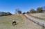 59 HUCKLEBERRY LANE, Jasper, AL 35504