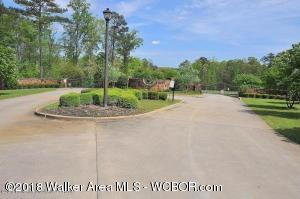 LOT 229 S STONEY POINT Rd, Double Springs, AL 35553