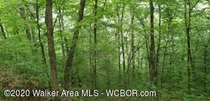 Lots 4 and 31 The Coves at Crooked Creek. Approximately 3 acres with  approx  148 ft of year round water. Several building sites with incredible views.. Lot has an access easement on the bottom of the hill per owner.