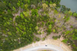 LOT #26 SHORESIDE AT SIPSEY, Double Springs, AL 35553