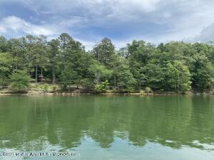 LOT 132 S STONEY POINT Rd, Double Springs, AL 35553