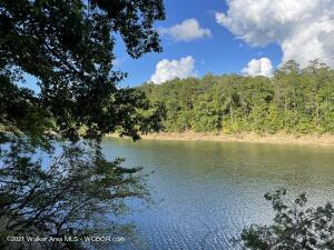 LOT 39 SHORESIDE AT SIPSEY, Double Springs, AL 35553
