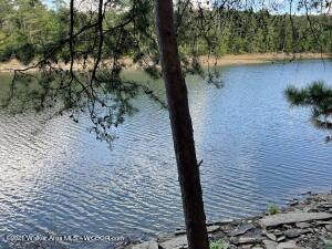 LOT 40 SHORESIDE AT SIPSEY, Double Springs, AL 35553