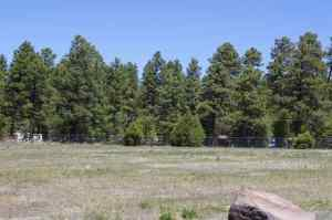 Lot 9 Rainbow View Drive, Lakeside, AZ 85929