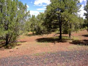 Lot 89 Ranch Road, Mountain Pines Ranch, Vernon, AZ 85940