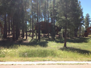 Lot 65 E Pebble Creek Lane, Pinetop, AZ 85935