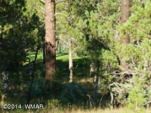 1651 S Falling Leaf Road, Lot 387 Rendezvous 3, Show Low, AZ 85901