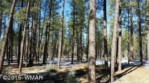 69 Wild Oak, Pinetop, AZ 85935