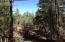0000 Por 212 42 068b/Davis Lane, Lakeside, AZ 85929