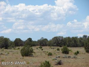 WOODRIDGE RANCH UNIT 9 TR 332, Concho, AZ 85924
