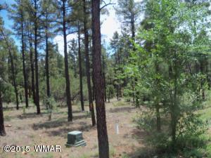 3020 W Alpine Ridge Road, Show Low, AZ 85901
