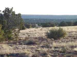 2835 Lone Star Road, Show Low, AZ 85901