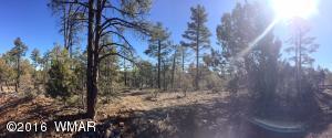 1525 S TWIN PEAK Trail, Show Low, AZ 85901