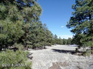 Lot #13 Red Cabin Ranch, Vernon, AZ 85940