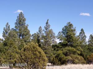 Lot #14 Red Cabin Ranch, Vernon, AZ 85940
