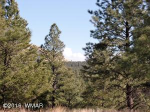 Lot #16 Red Cabin Ranch, Vernon, AZ 85940