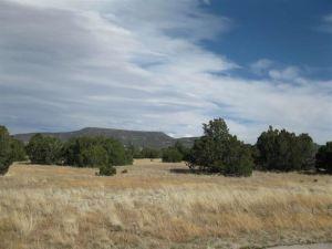 1257 W Elk Crest Way, Eagar, AZ 85925