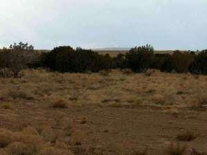 lot 631 Chevelon Canyon Ranch 4 Road, 5996 WIDE SKY RD, Overgaard, AZ 85933