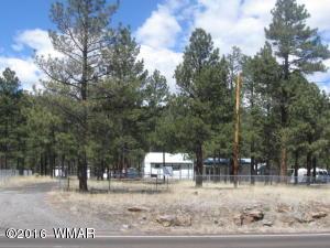 38730 Highway 373, Greer, AZ 85927