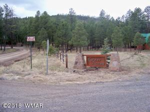 Lot 9 Greer Acres, Greer, AZ 85927