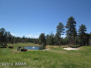 4260 W Sugar Pine Lot 48, Show Low, AZ 85901