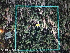 212-45-009 RIM Spur Spur, Lakeside, AZ 85929