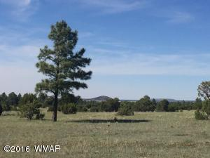 TBD Lone Horseman Road, Lakeside, AZ 85929