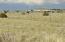 126 Lake View Ranch, Concho Valley, AZ 85924