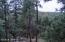 2151 E Ridge Drive, Pinetop, AZ 85935